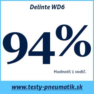 Test zimných pneumatík Delinte WD6
