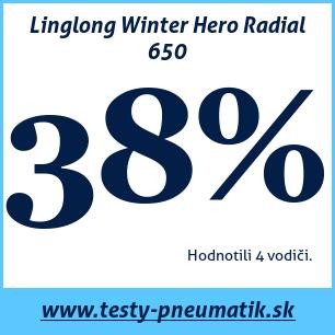 Test zimných pneumatík Linglong Winter Hero Radial 650