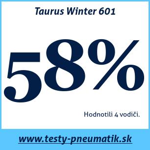 Test zimných pneumatík Taurus Winter 601